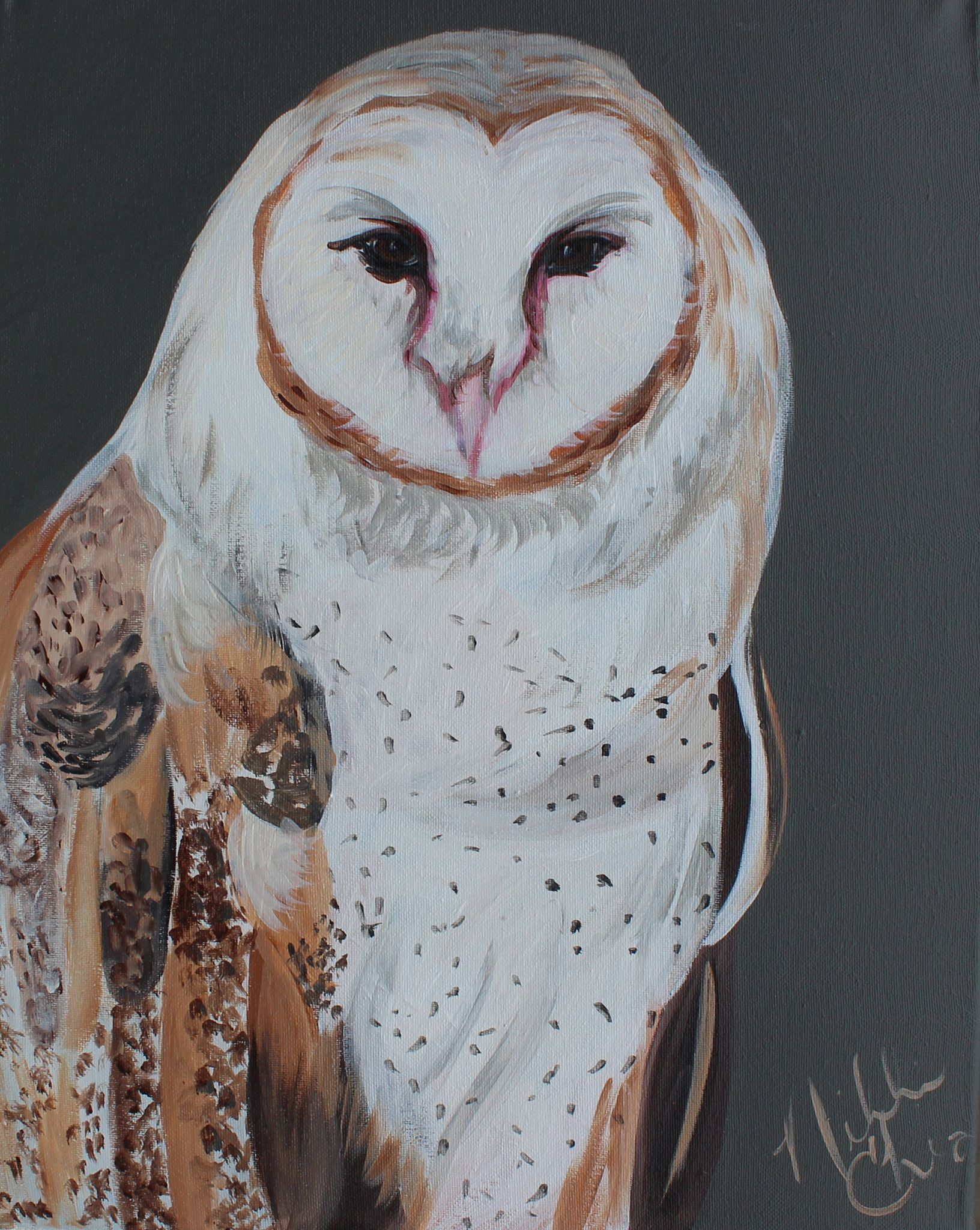 owl2018